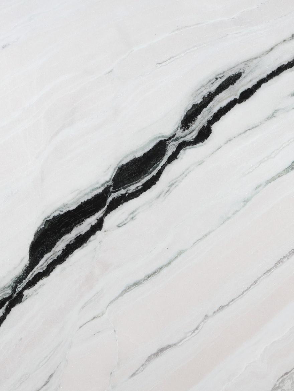 panda white tekstura